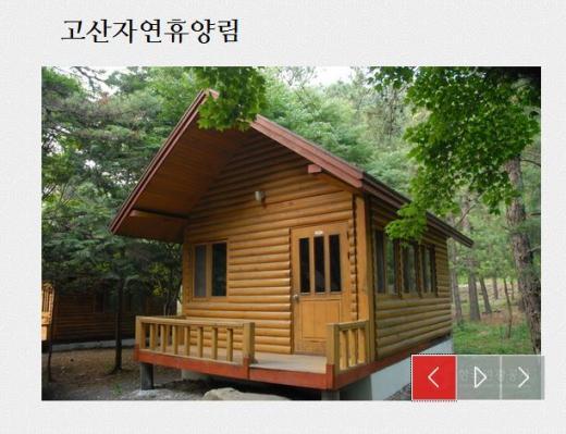 고산자연휴양림. /사진=한국관광공사