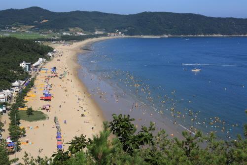국제친환경 해변 인증, '완도 명사십리해수욕장' 개장