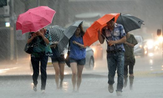 국지성 폭우/사진=뉴시스DB