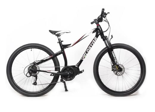 벨로스타 렌털 전기자전거 중 하나인 '맥스 HT'. /자료제공=벨로스타