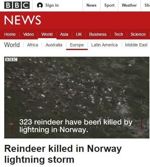 노르웨이 순록 벼락. /자료= BBC 방송 캡처