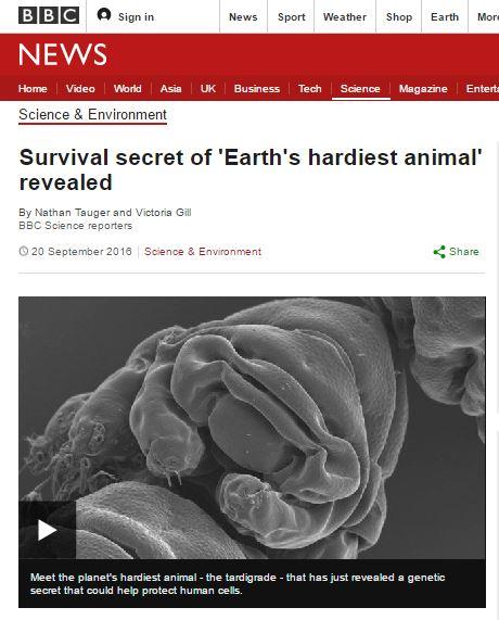 물곰. /자료=영국 BBC 방송캡처