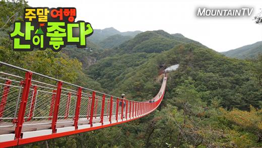 '주말여행 산이 좋다' 국내 최장 산악 현수교 파주 감악산 출렁다리 공개