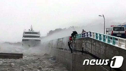 여수 오동도. 오늘(5일) 오전 9시쯤 전남 여수시 오동도 인근 방파제에 정박해 있던 1320톤 급 여객선이 태풍에 좌초돼 해경에 의해 구조됐다. /사진=뉴스1