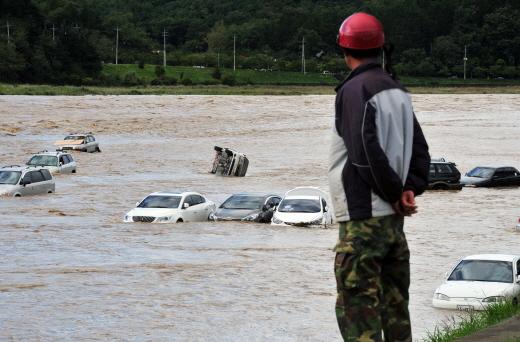태풍 차바로 인해 침수된 차량들. /사진=뉴스1 DB
