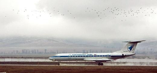 실종 수송기와 같은 기종의 Tu-134. /출처=뉴시스DB