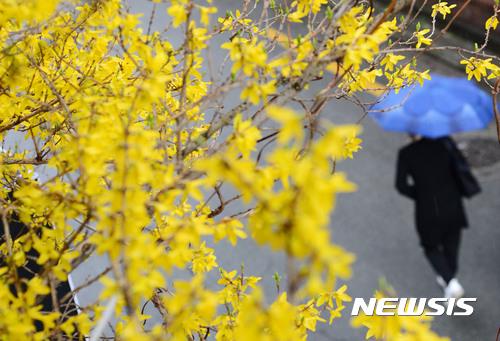 전국 봄비 내리고 쌀쌀. 봄비 내리는 26일 부산 한 아파트 단지. /자료사진=뉴시스