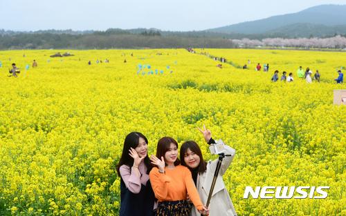 중국의 한국 단체관광금지조치 이후로 제주도에는 중국인 관광객이 줄었지만 내국인 관광객이 늘고 있다./사진=뉴시스