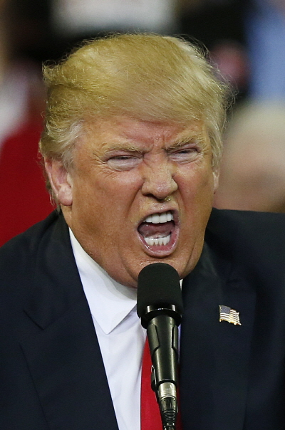 대통령 후보 시절의 도널드 트럼프 미국 대통령. /사진=AP 뉴시스