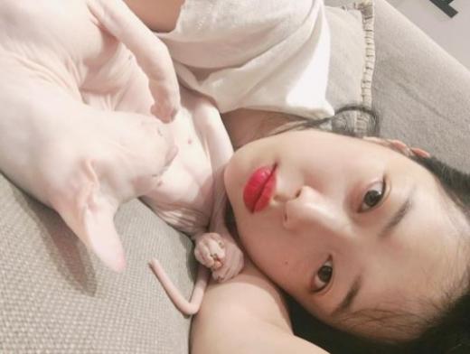 설리, 고양이 깨무는 동영상 '동물학대' 논란… 장어 이어 구설수