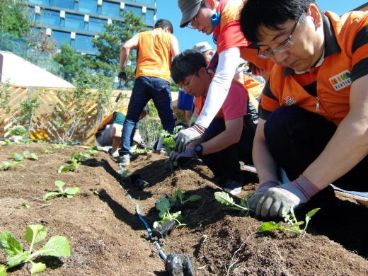 호반사랑나눔이 봉사단이 장학생들과 옥상정원을 가꾸고 있다. /사진=호반건설