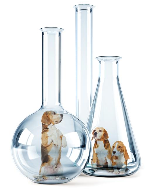 [동물과 더불어 사는 세상] 실험동물의 행복하게 살 권리