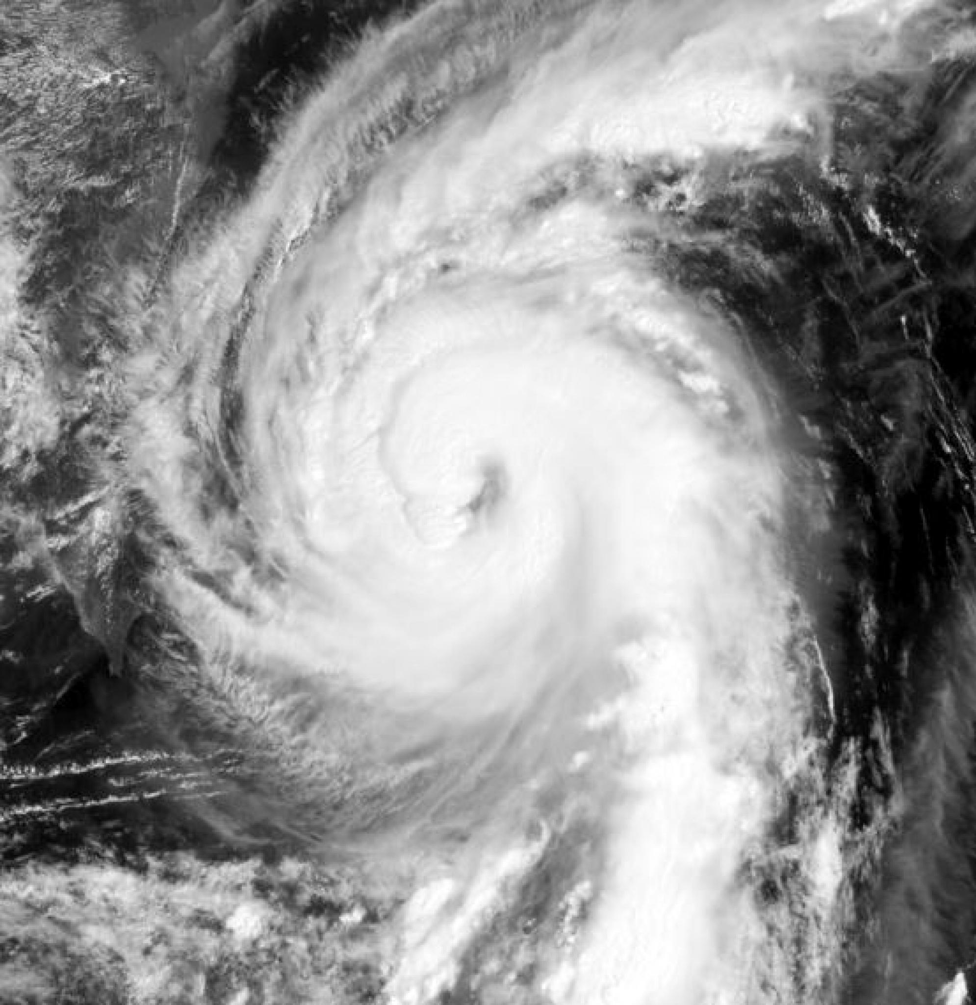 태풍 탈림 위성 사진. /자료=미국 해군 연구국(NRL)