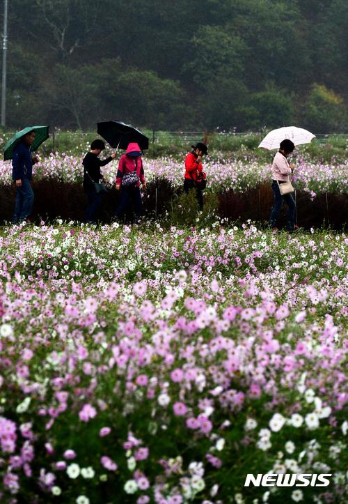 [오늘 날씨] 전국 흐리고 비, 강수량 최대 60mm… 바람 불어 '쌀쌀'