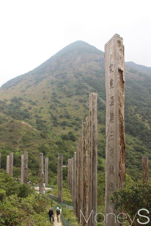 평웡산(934m)을 배경으로 우뚝 솟아있는 '지혜의 길'(wisdom path) 나무기둥들. 이 기둥에는 불경 '반야심경'이 적혀있다. /사진=박정웅 기자