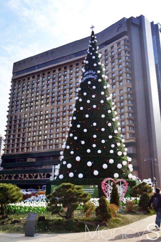 서울시청앞 광장에 세워진 높이 23m 대형트리. /사진=박찬규 기자
