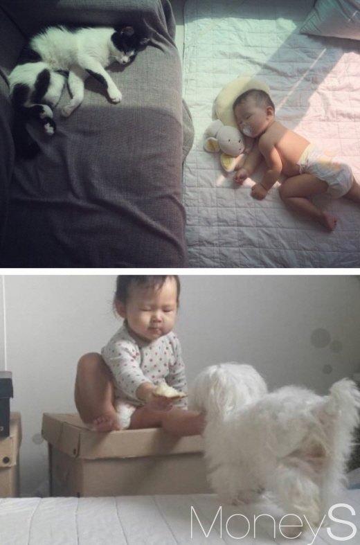 아기와 반려동물을 키우는 일은 힘들지만 많은 선물을 가져다준다. /사진=김노향 기자