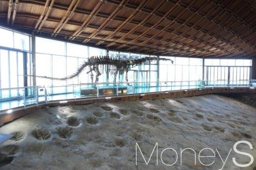 해남 제3보호각의 대형 초식공룡 마멘키사우루스 골격과 발자국 화석.