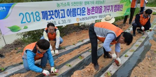 전남농협, 영암서 '깨끗하고 아름다운 농촌마을 가꾸기' 캠페인