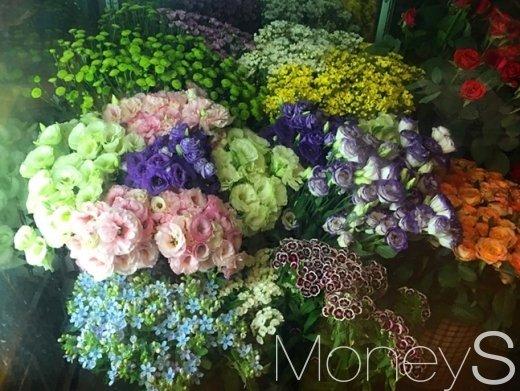 서울 청계천 인근 한 꽃집. /사진=강산 기자