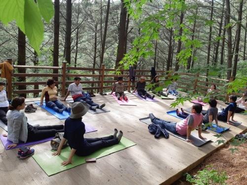 전남 화순 만연산, '치유의 숲' 산림치유프로그램 유료화