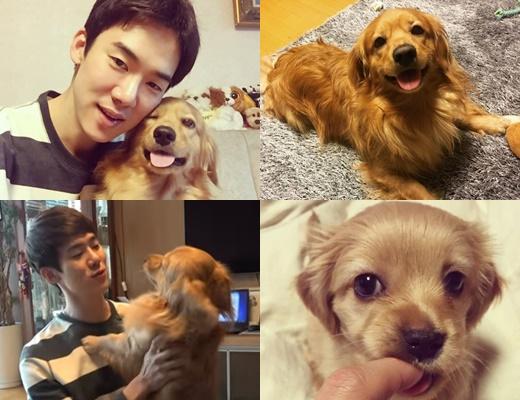 /사진=유연석 인스타그램·유튜브 '생일특집, 미남과 강아지'