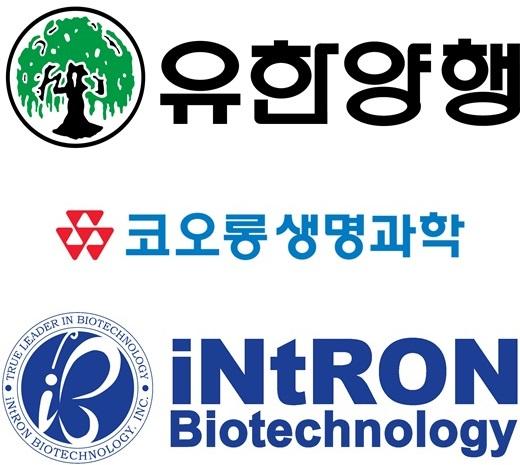 유한양행·코오롱·인트론… '기술수출 대박' 비결은?