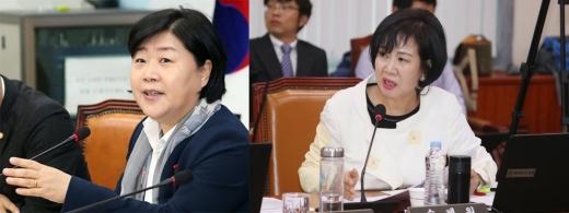 지인 재판 청탁·투기 의혹에 휩싸인 서영교(왼쪽), 손혜원 더불어민주당 의원. /사진=뉴스1