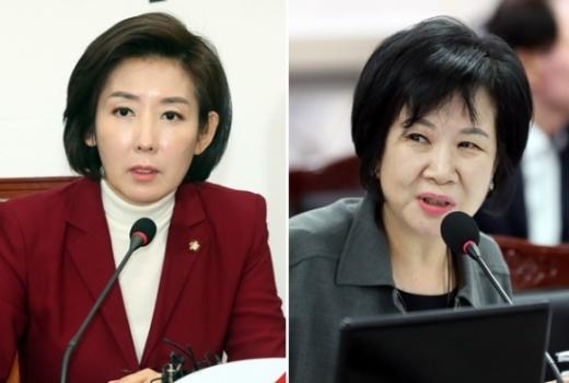 나경원 자유한국당 원내대표(왼쪽)과 손혜원 더불어민주당 의원. /사진=뉴시스