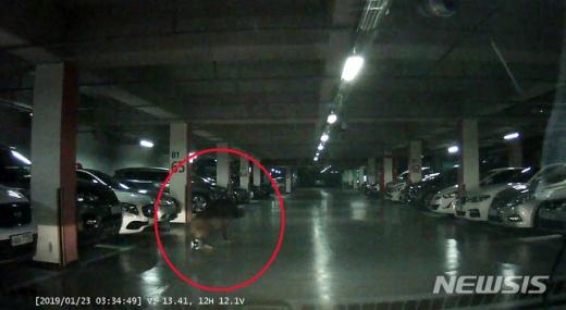 지난 23일 오전 3시59분쯤 부산 사하구의 한 아파트 지하주차장에서 대형 멧돼지 한 마리가 출몰, 경찰과 소방이 합동으로 포획에 나섰지만 실패했다. /사진=뉴시스(부산경찰청 제공)