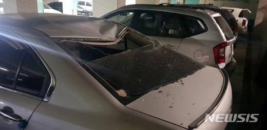 지난 23일 오전 3시59분쯤 부산 사하구의 한 아파트 지하주차장에서 대형 멧돼지 한 마리가 출몰, 주차된 차량 1대가 파손됐다. /사진=뉴시스(부산경찰청 제공)