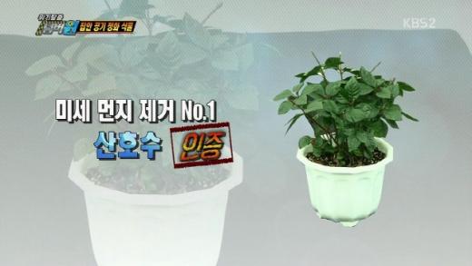 산호수. /사진=KBS 2TV 방송캡처