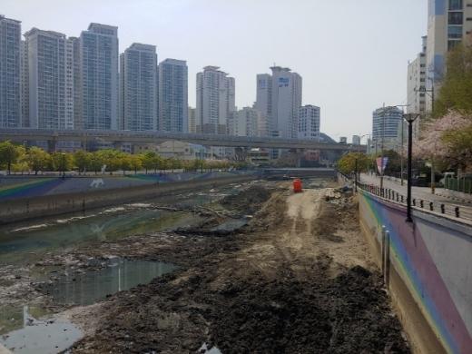 복원사업이 진행되고 있는 부산 대표 도심하천 동천./사진=김동기 기자