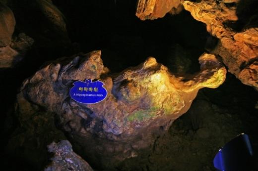하마를 닮은 하마바위. /사진=한국관광공사