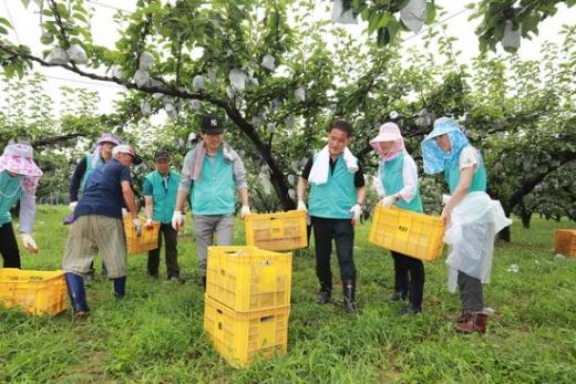 국민건강보험공단 임직원이 제13호 태풍 '링링'(LINGLING)으로 피해가 심한 서해안 지역에서 농촌 일손돕기 및 재해복구 활동을 펼치고 있다. /사진=건보공단