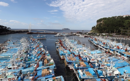 제주 서귀포 서귀동 서귀포항에 선박들이 피항해 있다. /사진=뉴스1