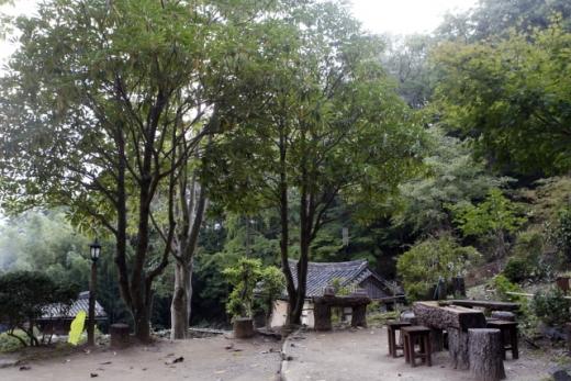 불일암. 법정이 사랑한 후박나무와 쉼터. /사진=한국관광공사