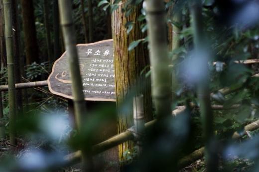 무소유길의 쉼표 법정스님의 글귀. /사진=한국관광공사