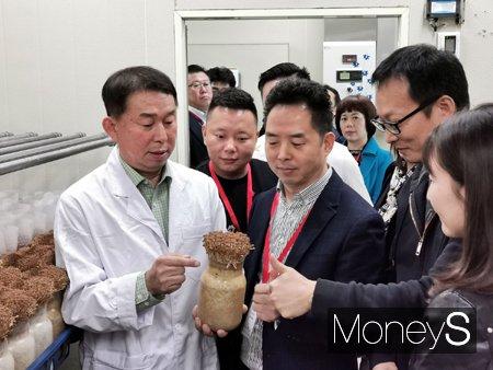 최근 중국 쓰촨성 훠궈협회 10개 회원사가 충북도 농업기술원이 개발한 신품종 갈색 팽이버섯을 살펴보고 있다./사진제공=aT