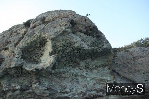 침식과 풍화작용으로 역겹의 세월을 이겨낸 바위가 마치 카스테라의 속살을 연상케하고 있다./사진=홍기철기자