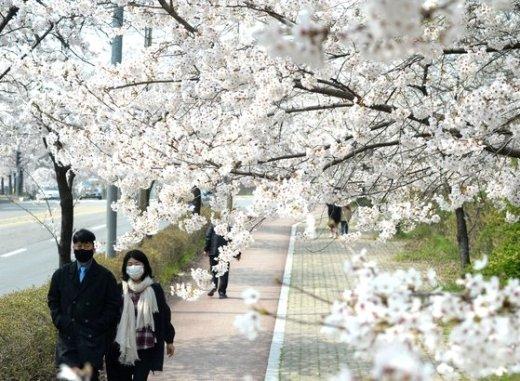 """[오늘날씨] 식목일 '반짝' 꽃샘추위… """"내일부터 풀려요"""""""