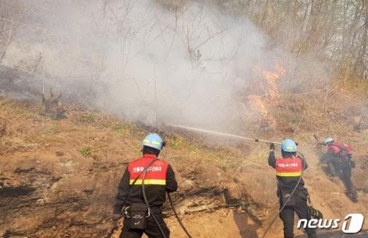 남부지방산림청 특수진화대원들이 25일 경북 안동시 풍천면에서 발생한 산불 진화작업을 펼치고 있다. /사진=뉴스1(남부지방신림청 제공)