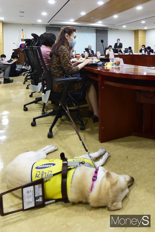 [머니S포토] 통합당 초선의원 모임 참석한 김예지·조이