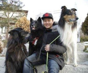 80대 노인 물어서 죽인 김민교 반려견… '벨지안 쉽도그'는 어떤 개?