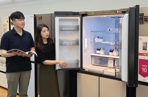 으뜸효율가전 환급 대상 가전제품 중 냉장고의 판매가 가장 많은 것으로 나타났다. / 사진=전자랜드