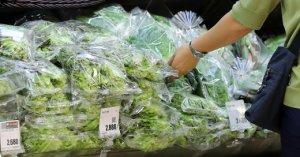 '물폭탄 맞은 채소'… 밥상물가 한달새 100% 폭등 주부 한숨