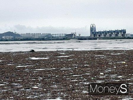 지난 주말 광주전남 집중호우로 영산강 하류인 영산강 하구둑에 생활쓰레기와 수초가 밀려들어 강이 쓰레기 섬으로 변했다./사진=홍기철기자
