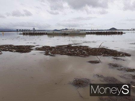 목포 대표 관광지인 목포 하당 춤추는 분수에 쓰레기들이 밀려왔다. 바닷물이 흙탕물로 물들었다./사진=홍기철기자