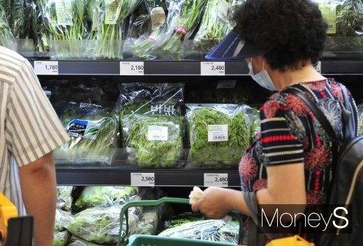 역대 최장기간 장마와 태풍으로 인해 8월 채소 가격이 28.6% 급등했다. 이에 소비자물가 상승률은 0.7%로 지난 3월 이후 최대폭으로 상승했다. /사진=장동규 기자