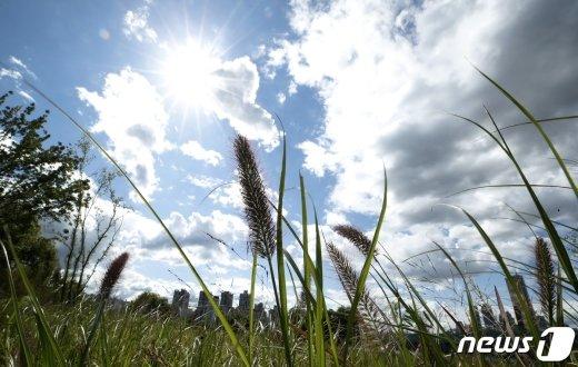 [내일 날씨] 전국 미세먼지 없이 쾌청… 강원영동은 아침까지 비
